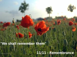 800px-Remembrance_Wallpaper