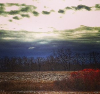 A winter landscape that provided the perfect backdrop for my writerly reflection.