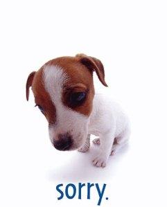 puppy_im_sorry